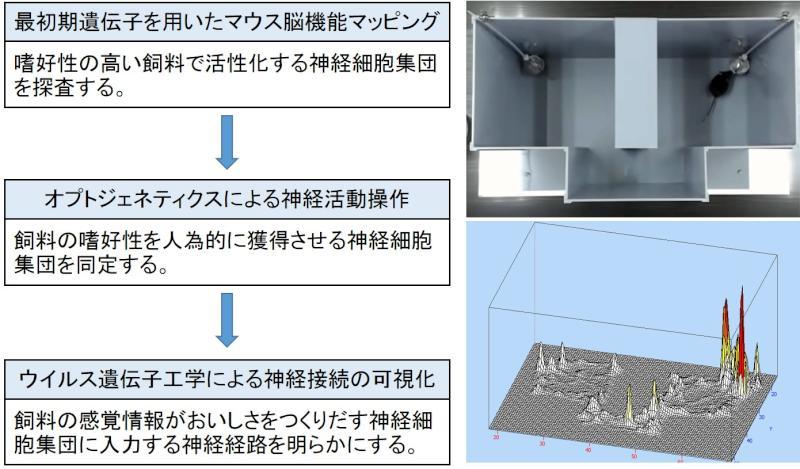 D01-8_overview_j.jpg