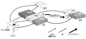 図(藤田一郎研究).png