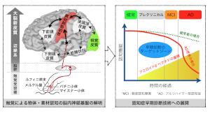 楊(岡大)研究図_JP.png