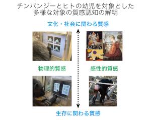 image_jp_imura.png